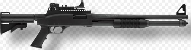shotgun123
